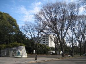 2011.1.3    明治神宮 002