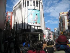 2011.1.3    明治神宮 009
